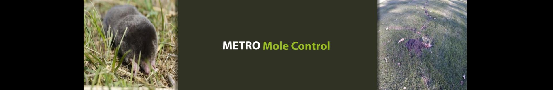Metro Mole Control